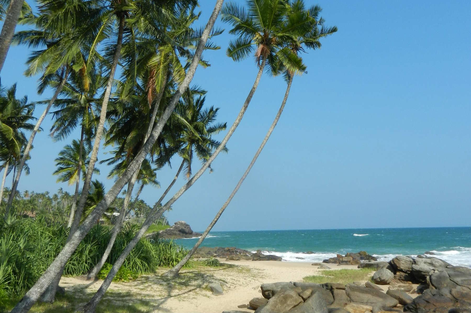 Four Must-See Highlights of Sri Lanka
